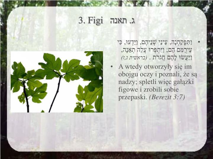 3. Figi