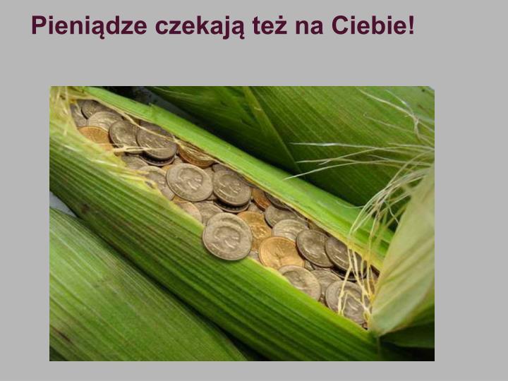 Pieniądze czekają też na Ciebie!