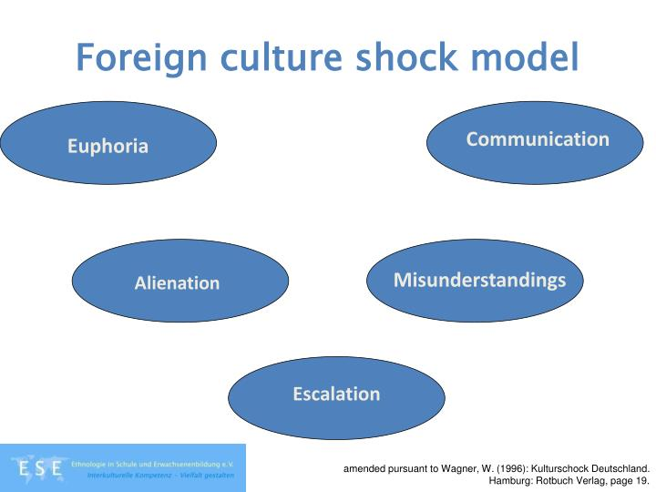 Foreign culture shock model