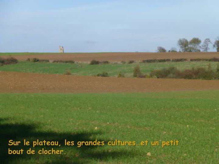 Sur le plateau, les grandes cultures…et un petit bout de clocher.