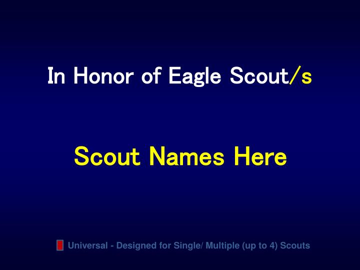In Honor of Eagle Scout