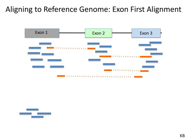 Aligning to Reference Genome: