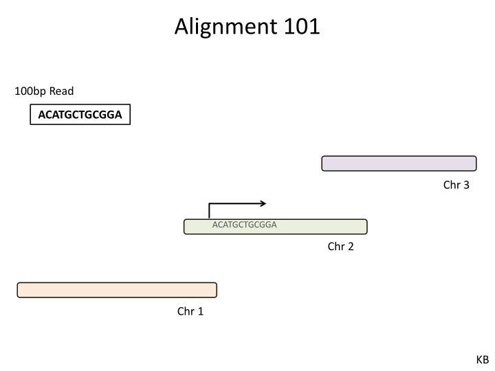 Alignment 101