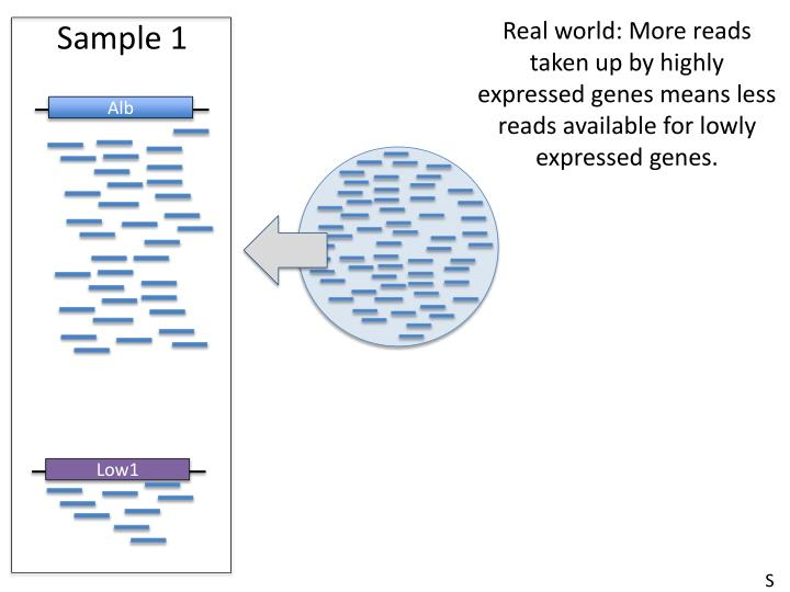 Real world: More reads taken up by highly expressed genes means less reads available for lowly expressed genes.