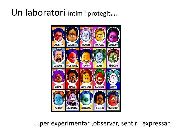 Un laboratori