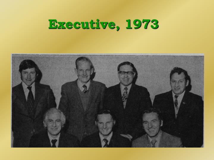 Executive, 1973