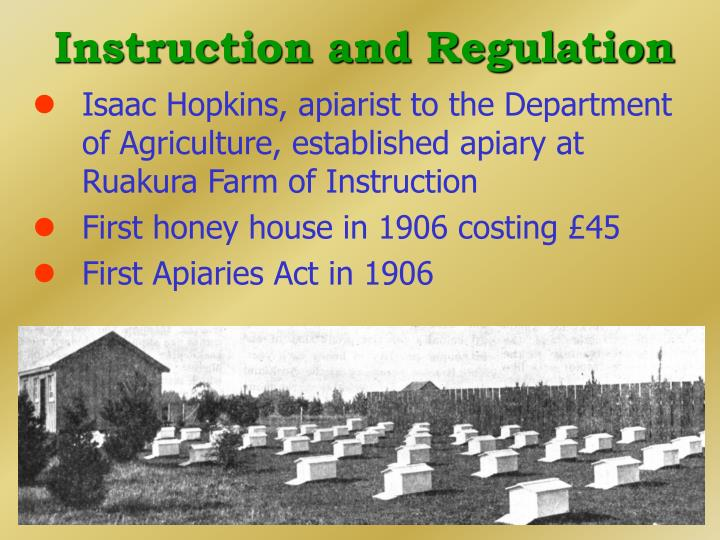 Instruction and Regulation