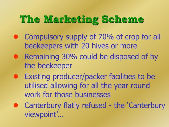 The Marketing Scheme