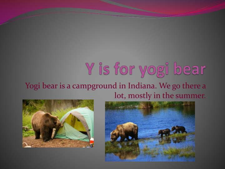 Y is for yogi bear