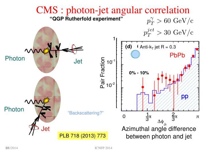 CMS : photon
