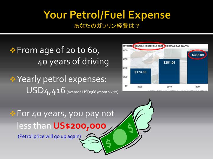 Your petrol fuel expense