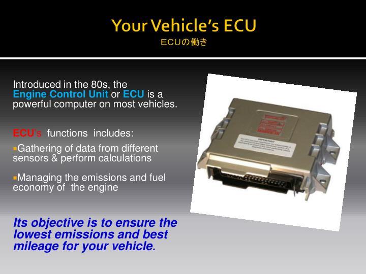 Your Vehicle's ECU