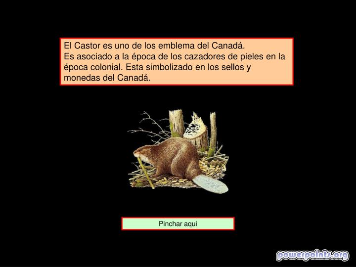 El Castor es uno de los emblema del Canadá.
