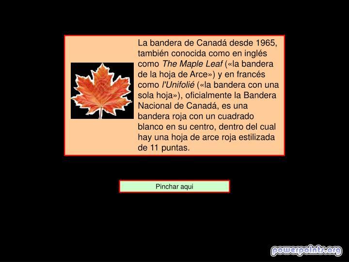 La bandera de Canadá desde 1965, también conocida como en inglés como