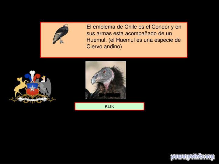El emblema de Chile es el Condor y en sus armas esta acompañado de un Huemul. (el Huemul es una especie de Ciervo andino)