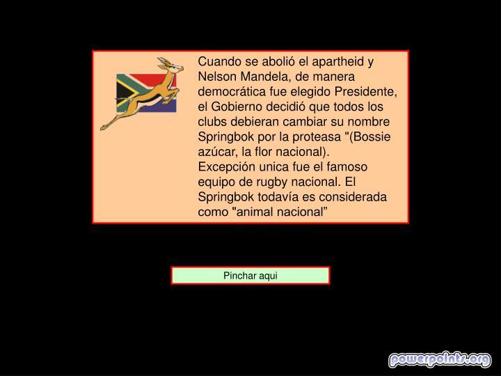 """Cuando se abolió el apartheid y Nelson Mandela, de manera democrática fue elegido Presidente, el Gobierno decidió que todos los clubs debieran cambiar su nombre Springbok por la proteasa """"(Bossie azúcar, la flor nacional)."""
