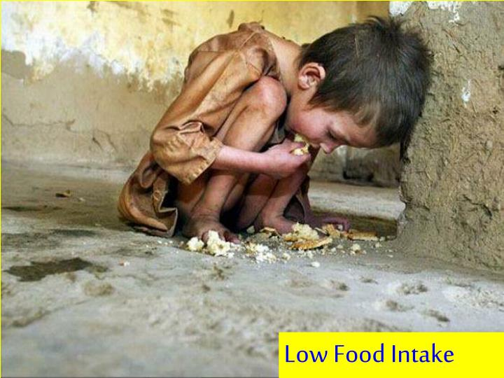 Low Food Intake