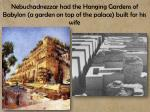 nebuchadnezzar had the hanging gardens of babylon a garden on top of the palace built for his wife