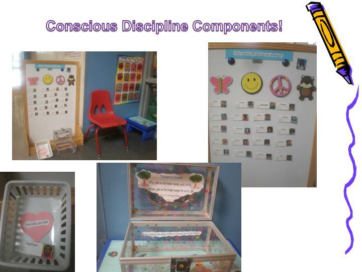 Conscious Discipline Components!