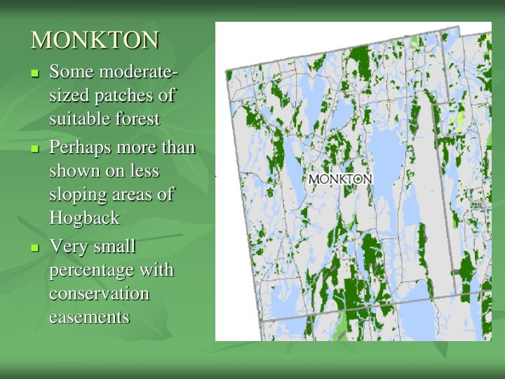 MONKTON