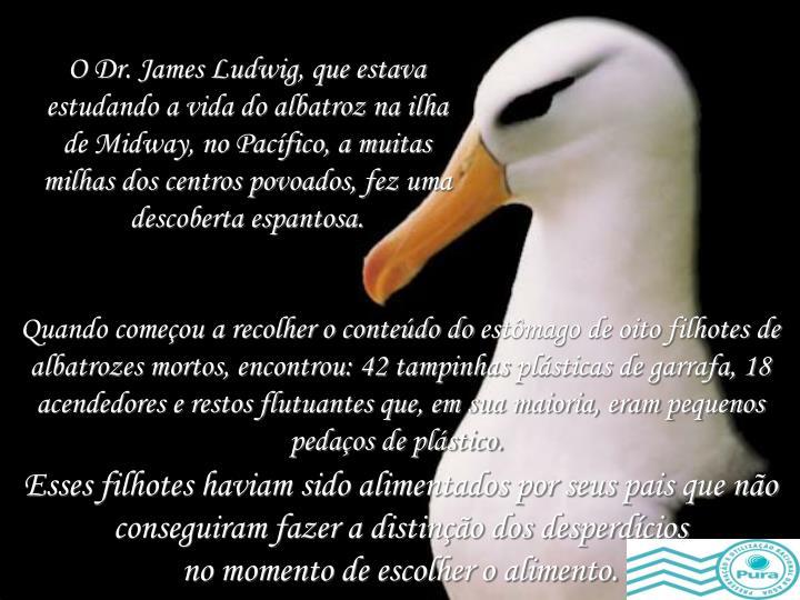 O Dr. James Ludwig, que estava estudando a vida do albatroz na ilha de Midway, no Pacífico, a muitas milhas dos centros povoados, fez uma descoberta espantosa.
