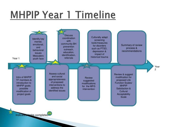 MHPIP Year 1 Timeline