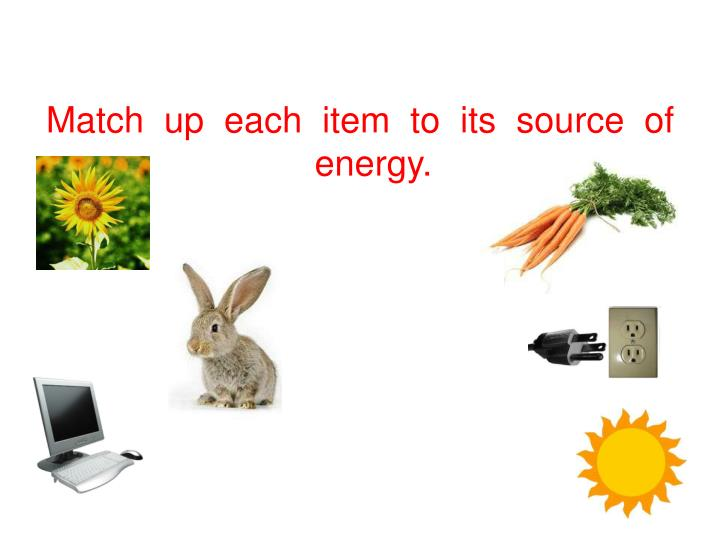 Match  up  each  item  to  its  source  of  energy.