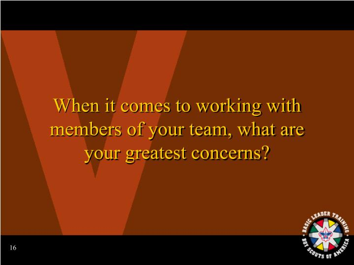 When it comes to working with members of your team, what are your greatest concerns?