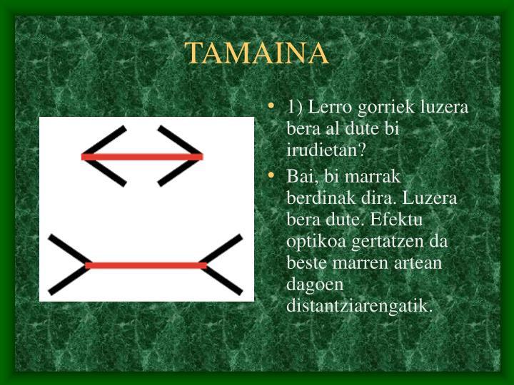 TAMAINA
