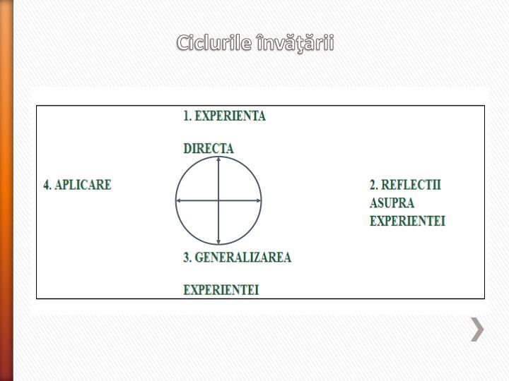 Ciclurile învăţării