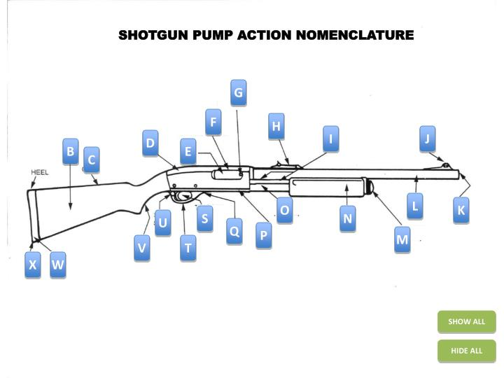 SHOTGUN PUMP ACTION NOMENCLATURE