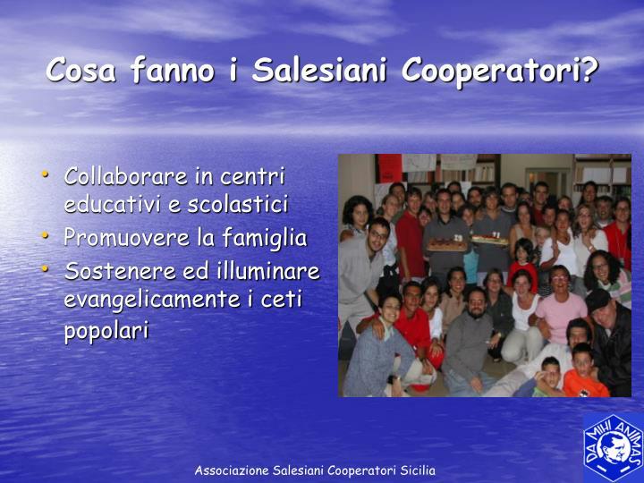 Cosa fanno i Salesiani Cooperatori?