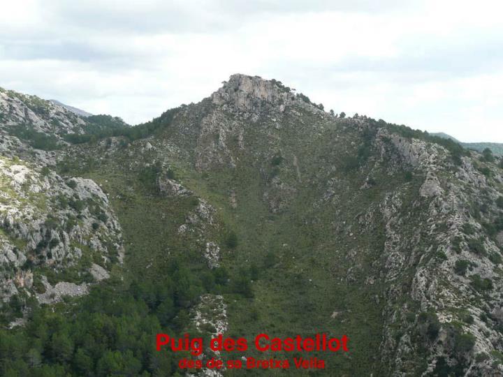 Puig des Castellot