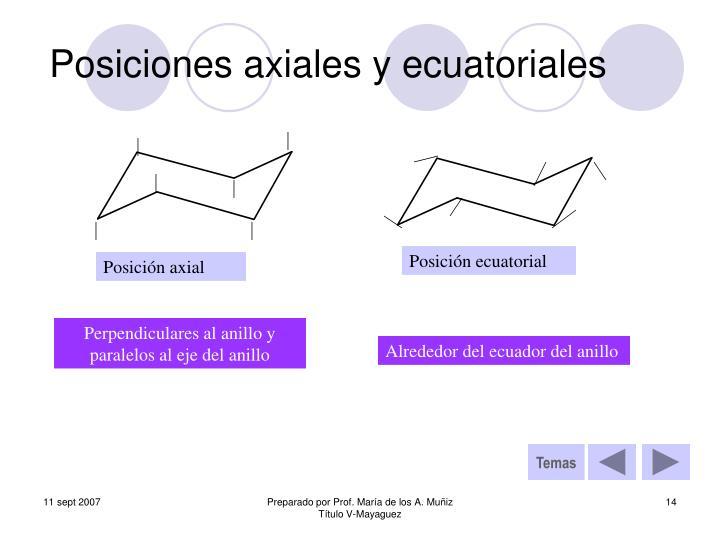 Posiciones axiales y ecuatoriales