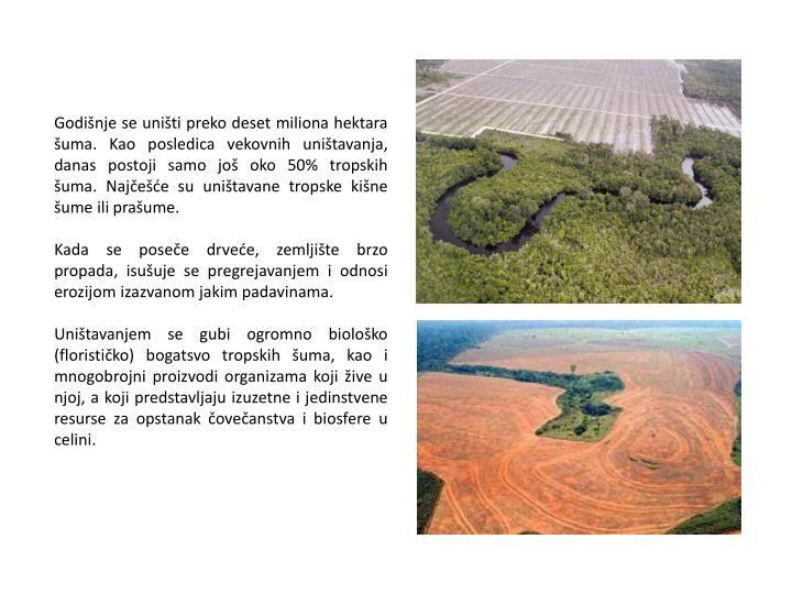 Godišnje se uništi preko deset miliona hektara šuma. Kao posledica vekovnih uništavanja, danas postoji samo još oko 50% tropskih šuma. Najčešće su uništavane tropske kišne šume ili prašume.