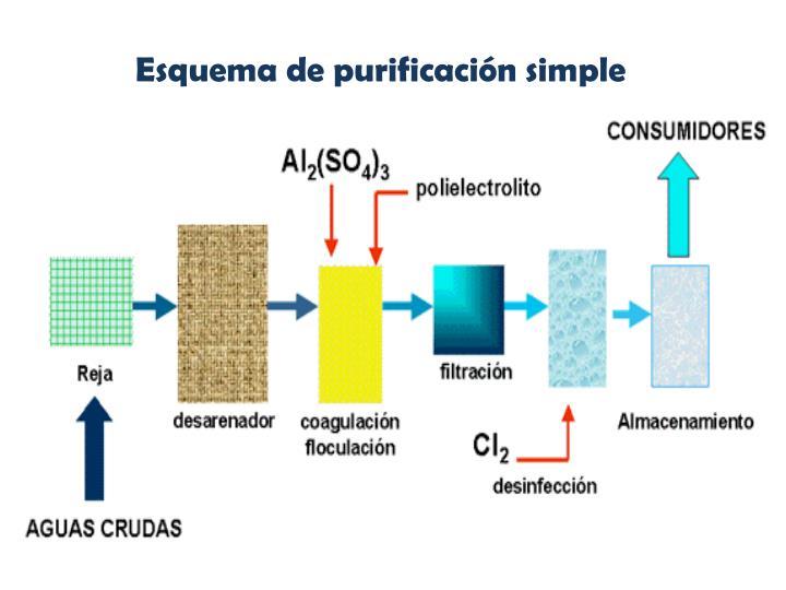 Esquema de purificación simple