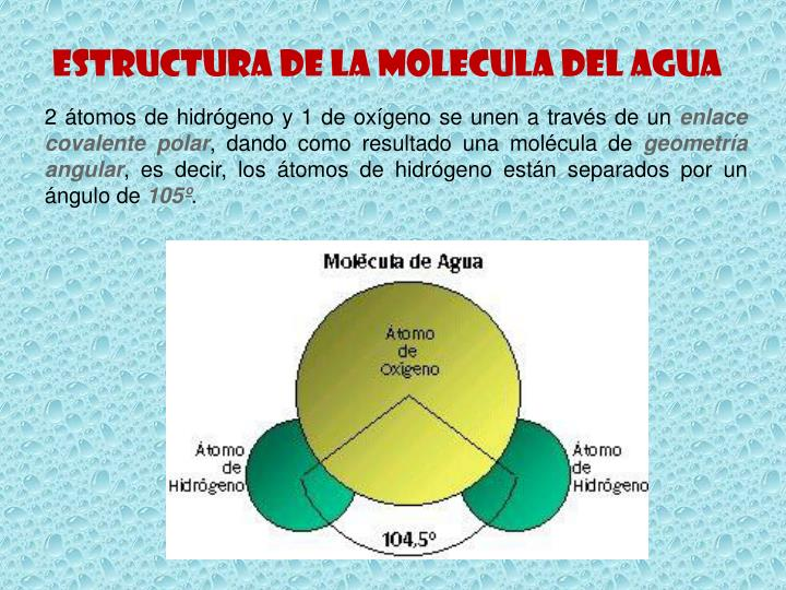 ESTRUCTURA DE LA MOLECULA DEL AGUA