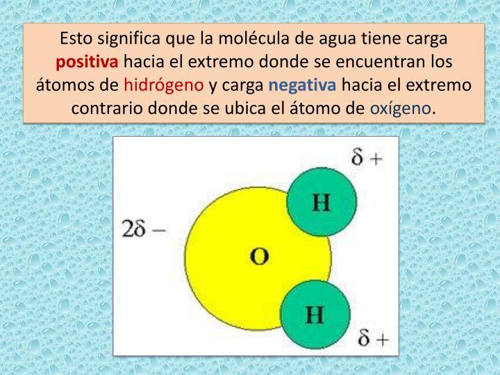 Esto significa que la molécula de agua tiene carga
