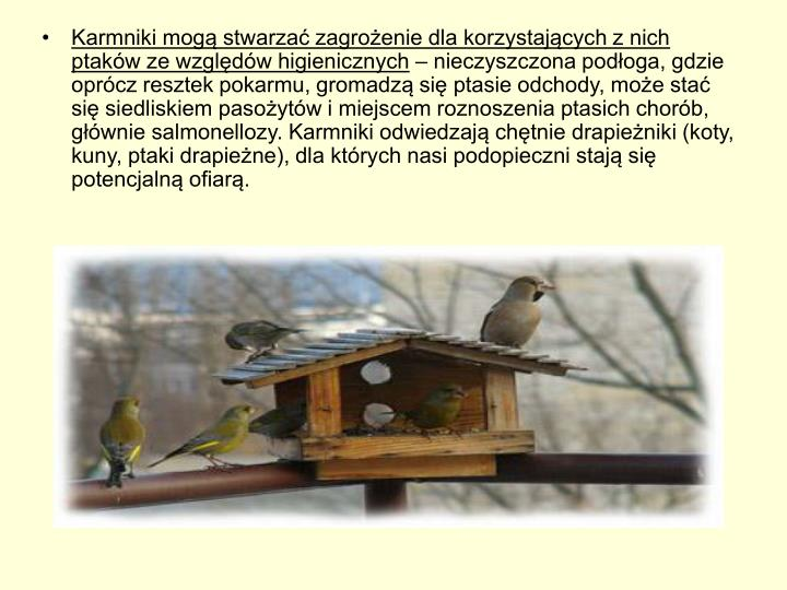 Karmniki mogą stwarzać zagrożenie dla korzystających z nich ptaków ze względów higienicznych