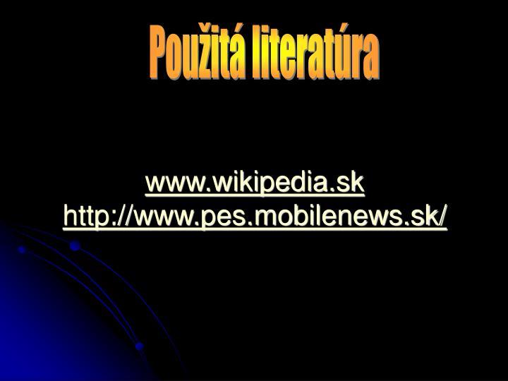 www.wikipedia.sk