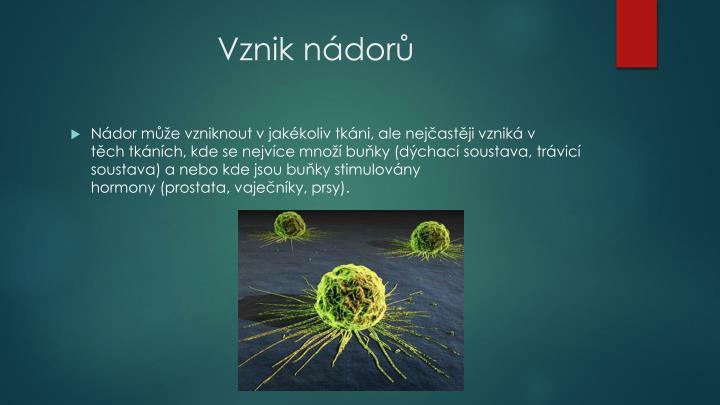 Vznik nádorů