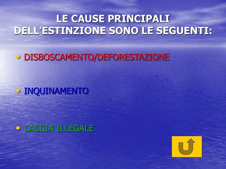 DISBOSCAMENTO/DEFORESTAZIONE