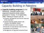 capacity building in palestine