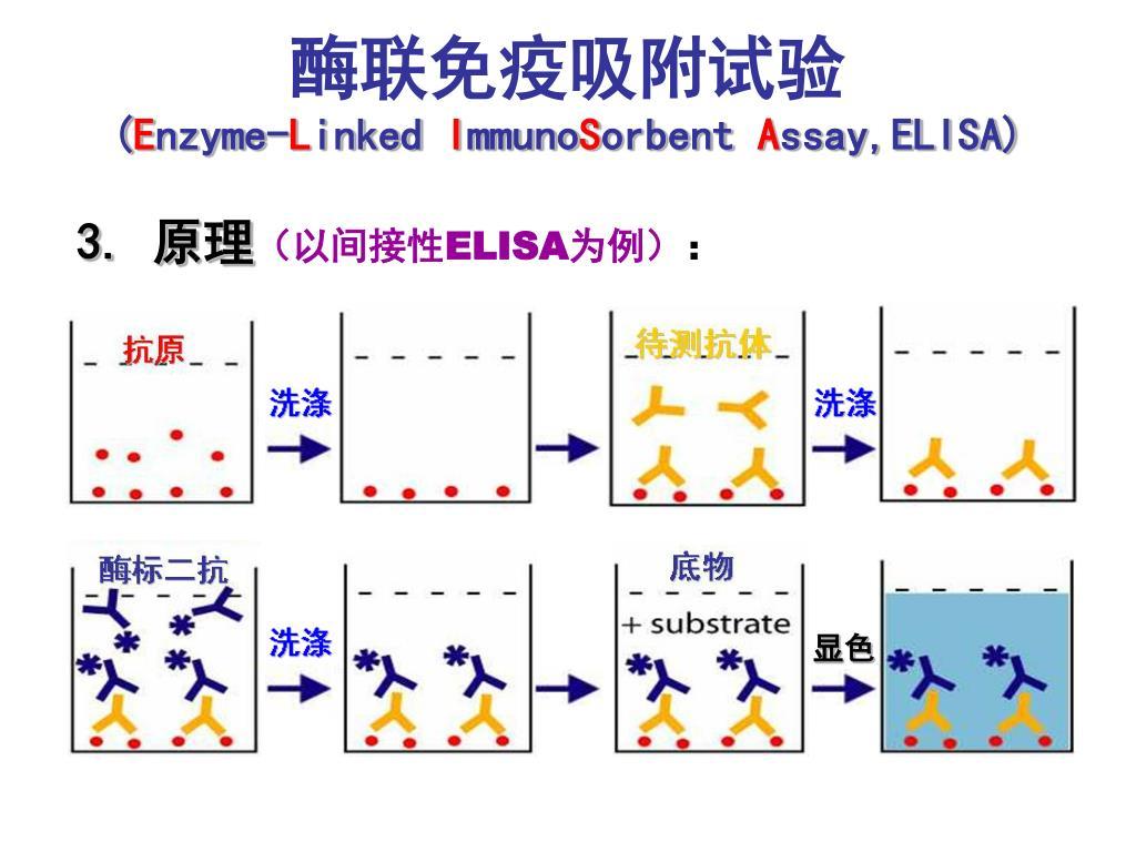 电路 电路图 电子 设计 素材 原理图 1024_768