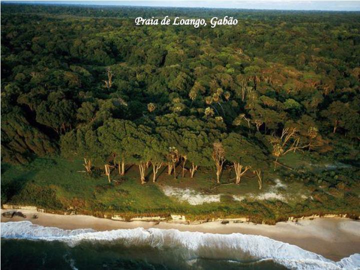 Praia de Loango, Gabão