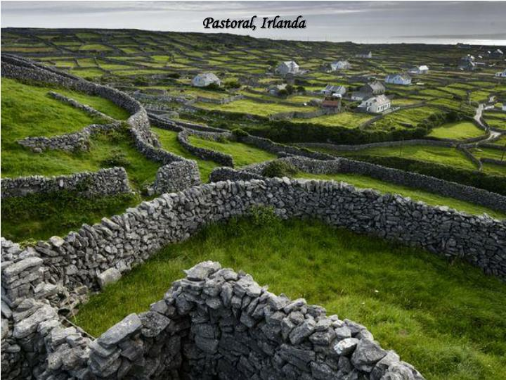 Pastoral, Irlanda