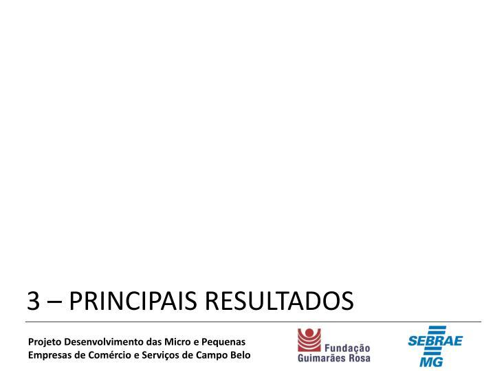 3 – PRINCIPAIS RESULTADOS