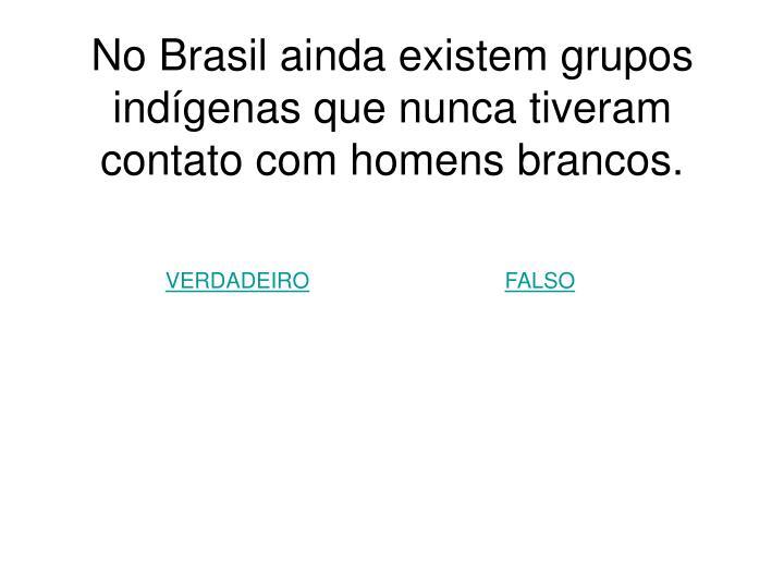 No Brasil ainda existem grupos indígenas que nunca tiveram contato com homens brancos.