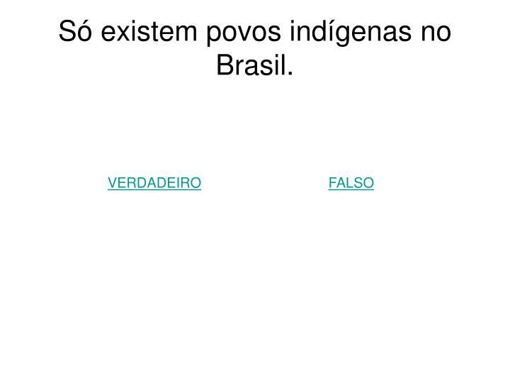 Só existem povos indígenas no Brasil.