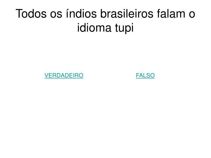Todos os índios brasileiros falam o idioma tupi